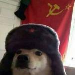Perro-Ruso's avatar