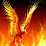 Paradox385's avatar