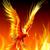 Paradox the Phoenix