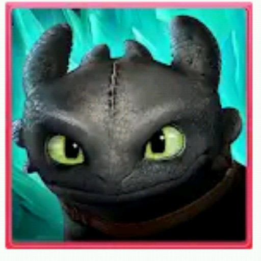 Toothless and Hiccup forever