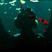 Threeslyfoxes's avatar