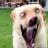 Adersonmrmaster's avatar
