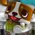 Jaden871's avatar