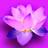 Blumenblatt's avatar