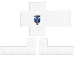 Quinnshoemakergamer1
