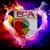 FCA Lover