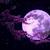 Луна, Что Сияет В Ночном Небе