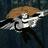 Софья Софа's avatar