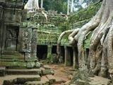 Card 206: Angkor