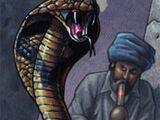 Card 47: Snake Charmer
