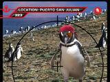 Card 323: Puerto San Julian