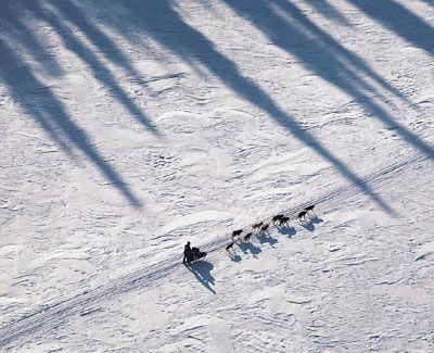 Iditarod.jpg