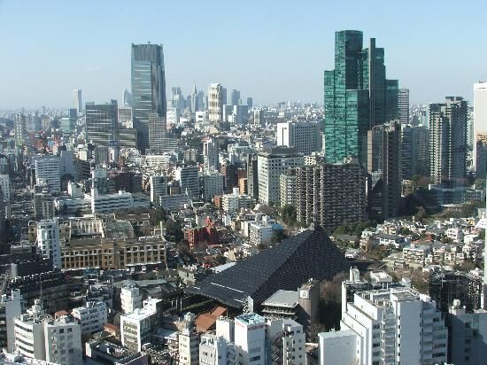 Tokyo from tower.jpg