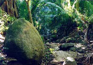 Madagascar Boulder.jpg