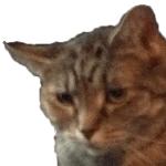 Xyquad1's avatar
