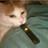 Dgpredator777's avatar