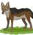 JKL777's avatar
