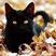 Кіт Чарлі's avatar