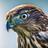 WibblyWolf's avatar