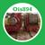 Ois894
