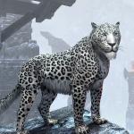 DerSchneeleo's avatar