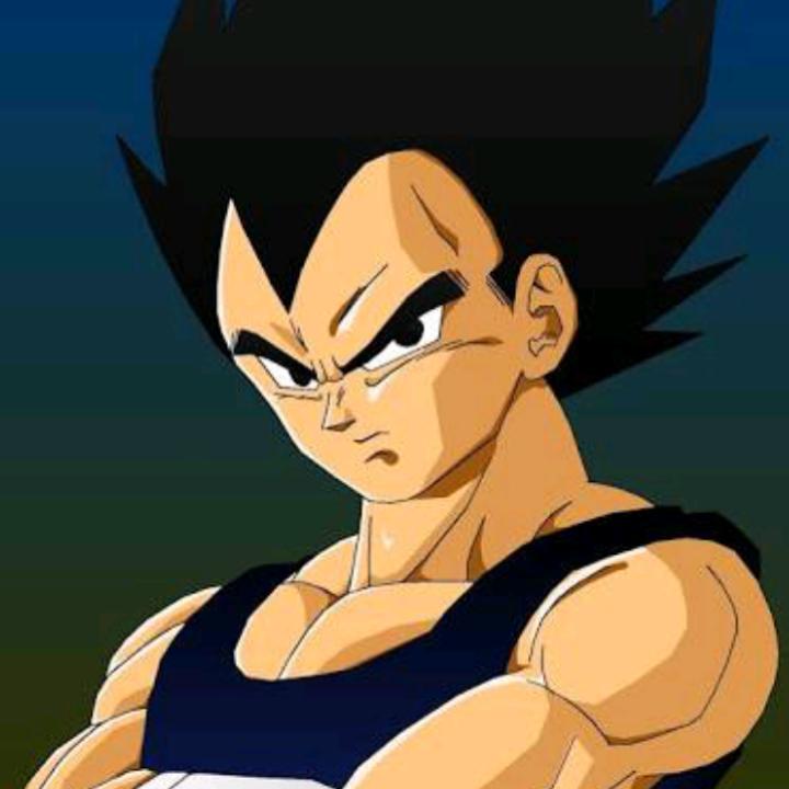 Principe Vegeta152's avatar