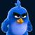Blue bird3453