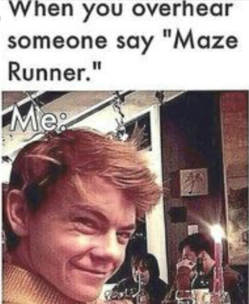 I go crazy when one of my friend start  talking about the maze runner