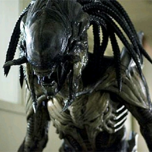 Xenopreditor's avatar