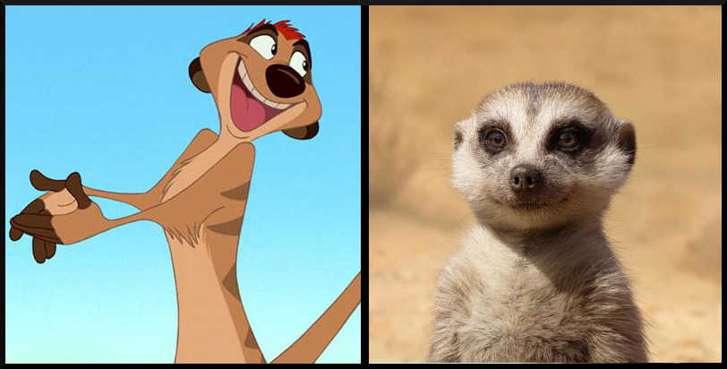 Timon from The Lion King- Then vs. Now, which character's appearance do you prefer?