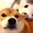 SaltCanFlick's avatar