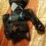 Youcanread's avatar