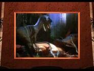 Deinonychus attacking Struthiomimus