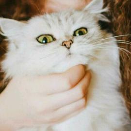 Quewina's avatar