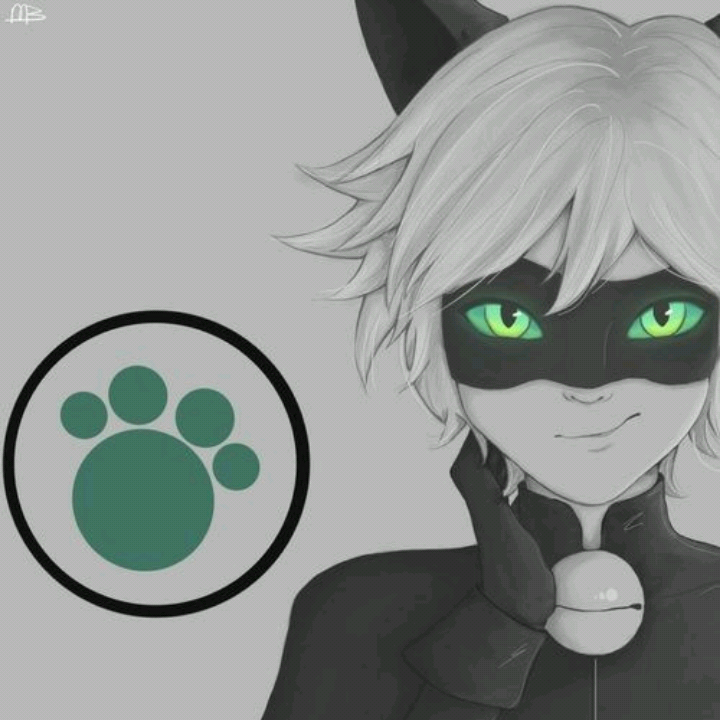 Chat Noir et moi's avatar