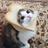 Akamiix's avatar