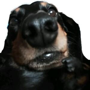 BuffMoon's avatar