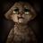 AnnaKovaleva's avatar