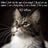 AmberMac420's avatar