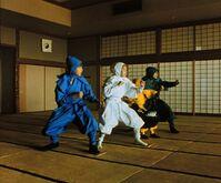 Ninjas and miyo