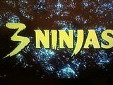 3 Ninjas (film)