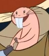 Rufus in Kim Possible A Sitch in Time