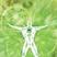 Greencosmos's avatar