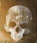33º de Zapadores Sanabrianos - copia.jpg
