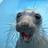 SmileyTurnips's avatar