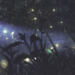 EverlastLily's avatar