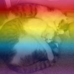 Charlotte O CATS KOTLC's avatar