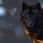 White Wolf CZ's avatar