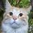 Bigwangers2's avatar