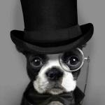 ProfessorNiedermeier's avatar